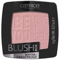 Catrice румяна BLUSH BOX 010 Soft Rose